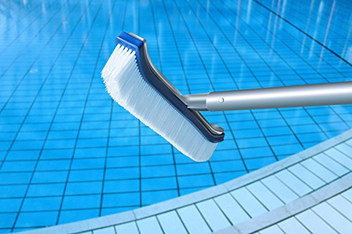 pool brush cleaning